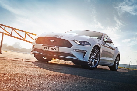 Horsing Around | Ford Mustang 2.3 Ecoboost